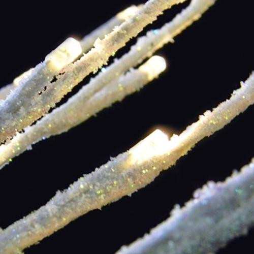 27 inch Silver Glitter Branch with 20 Warm White LED Lights - Battery Operated