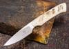 Arno Bernard Knives: Bush Baby Series - Galago - Sheep Horn - 060783