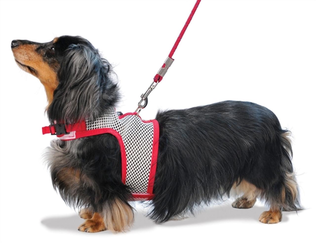 Mesh Dog Harness