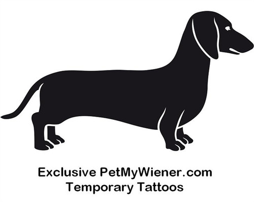 Dachshund Temporary Tattoos