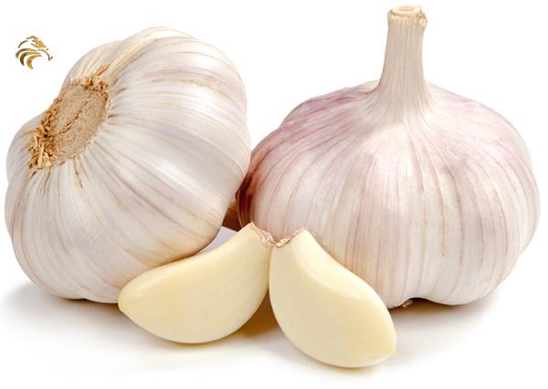 garlic-2.jpg