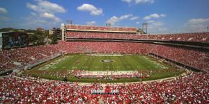 Georgia Bulldogs Sanford Stadium Football Field Photo Print 02 8x10-48x36