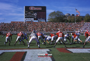 Georgia Bulldogs Sanford Stadium Football Field Photo Print 20 8x10-48x36