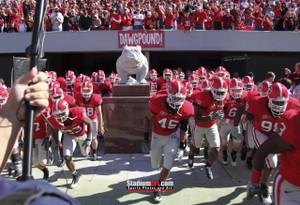 Georgia Bulldogs Sanford Stadium Football Field Photo Print 30 8x10-48x36