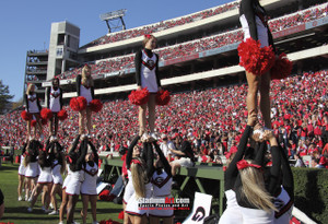 Georgia Bulldogs Sanford Stadium Football Field Photo Print 31 8x10-48x36