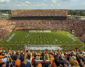 Auburn Tigers Jordan Hare Football Stadium Photo 8x10-48x36 Print 01