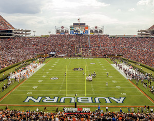 Auburn Tigers Jordan Hare Football Stadium Photo 8x10-48x36 Print 02