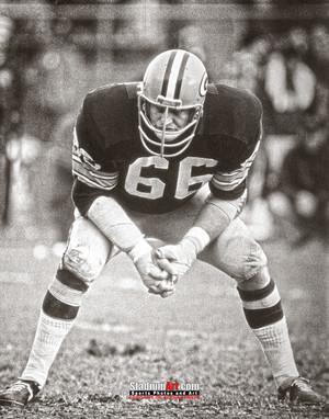 Green Bay Packers Ray Nitschke Football 8x10-48x36 Photo Print 51