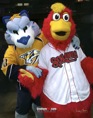 Nashville Sounds Minor League Baseball Booster Mascot 8x10-48x36 Photo Print 50