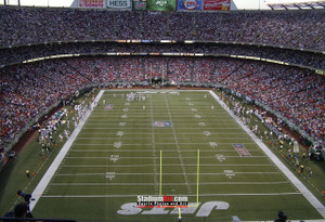 New York Jets Stadium NFL Football Photo Art Print 13x19 or 24x36 StadiumArt.com Sports Photos