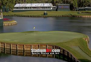 Sawgrass TPC Golf Hole  17 Tournament Players Club  8x10-48x36 Photo Print 1210