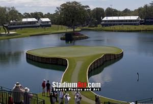 Sawgrass TPC Golf Hole  17 Tournament Players Club  8x10-48x36 Photo Print 1230