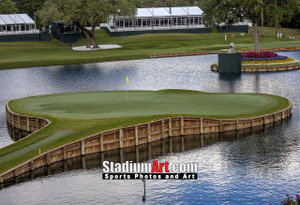 Sawgrass TPC Golf Hole  17 Tournament Players Club  8x10-48x36 Photo Print 1240