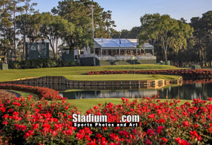 Sawgrass TPC Golf Hole  17 Tournament Players Club  8x10-48x36 Photo Print 1260