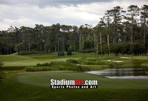 Sawgrass TPC Golf Hole 4 Tournament Players Club  8x10-48x36 Photo Print 1370