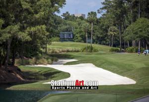 Sawgrass TPC Golf Hole 10 Tournament Players Club  8x10-48x36 Photo Print 1530