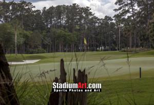 Sawgrass TPC Golf Hole 10 Tournament Players Club  8x10-48x36 Photo Print 1540