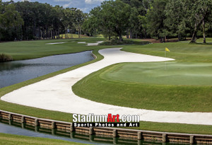 Sawgrass TPC Golf Hole 11 Tournament Players Club  8x10-48x36 Photo Print 1550