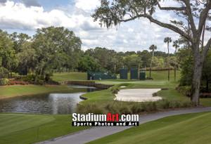 Sawgrass TPC Golf Hole 13 Tournament Players Club  8x10-48x36 Photo Print 1570