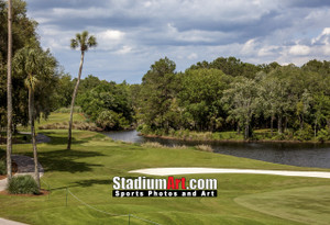 Sawgrass TPC Golf Hole 14 Tournament Players Club  8x10-48x36 Photo Print 1580