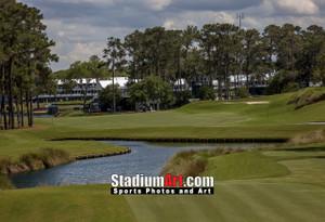 Sawgrass TPC Golf Hole 16 Tournament Players Club  8x10-48x36 Photo Print 1590b