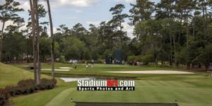 Sawgrass TPC Golf Hole 3 Tournament Players Club  8x10-48x36 Photo Print 1350