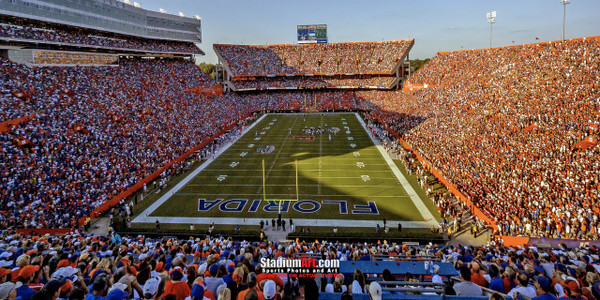 Florida Gators Ben Hill Griffin Stadium Steve Spurrier Field The Swamp Football Photo Print 01b 8x10-48x36
