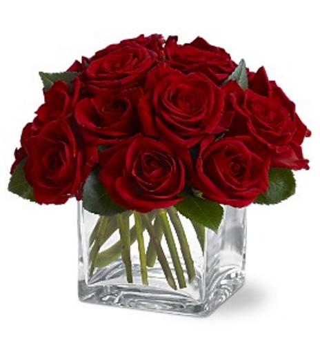 Dozen Rose Contempo