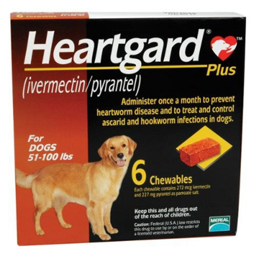 Heartgard Plus Chewables for Dogs 51-100 lbs - Brown 6 Pack