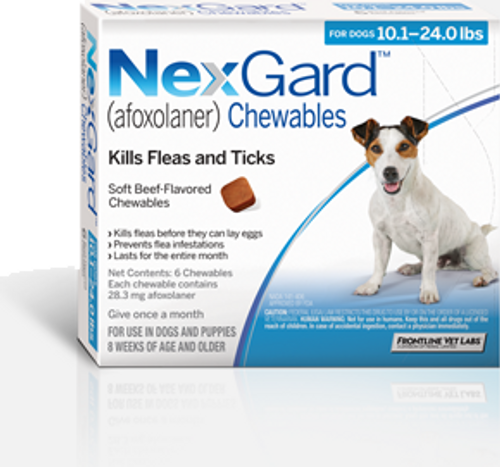 Nexgard for Dogs 10.1-24 lbs - 3 Pack