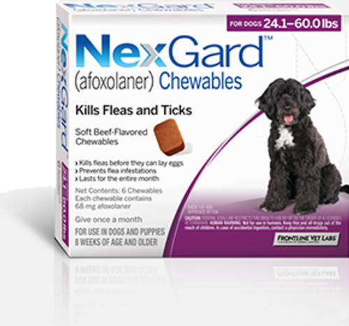 Nexgard for Dogs 24.1-60 lbs - 6 Pack