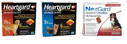 NexGard and Heartgard Combo for Dogs 100.1-121 lbs - 6 Pack