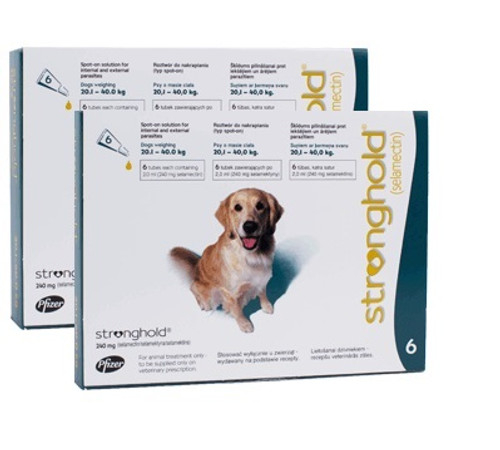 Stronghold for Dogs 40.1-85 lbs Teal 12 Pack