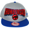 Thundercats Block Name Hat