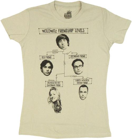 Big Bang Theory Friendship Levels Baby Tee