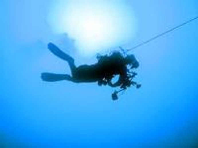 Christmas Inspiration; The Gift of Scuba Lessons