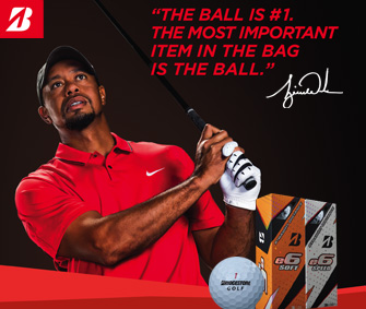Shop Bridgestone e6 Golf Balls w/ FREE Personalization!