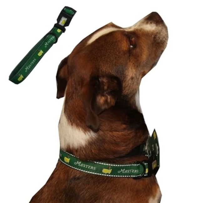 Masters Green Dog Collar