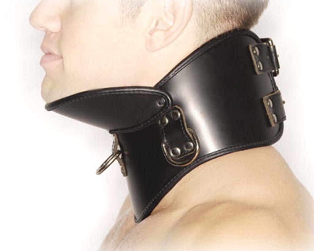Deluxe Posture Collar