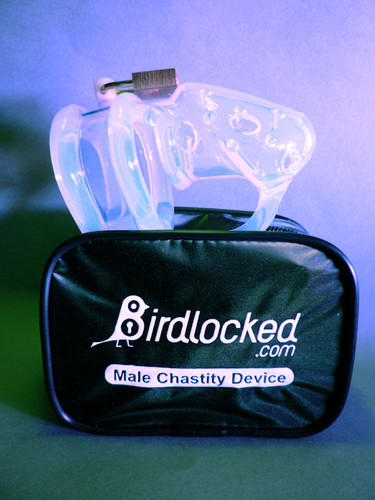 Birdlocked Pico Chastity - Clear