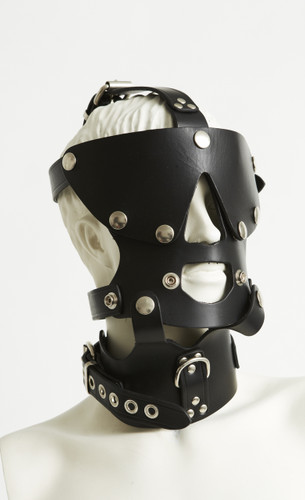 Head Harness 2