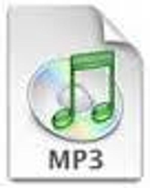 Tisha B'av 1 (7 MP3's)