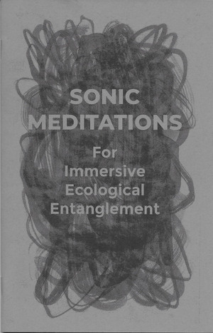 "Front cover of ""Sonic Meditations for Immersive Ecological Entanglement"""