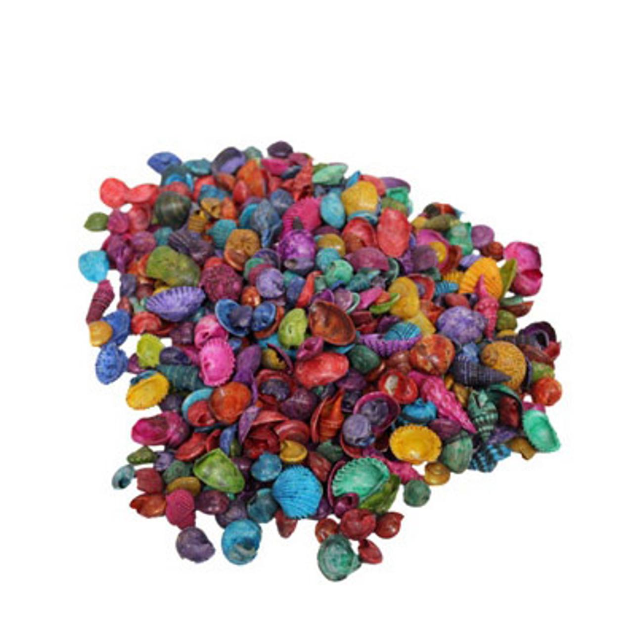 Small Dyed India Mix Seashells