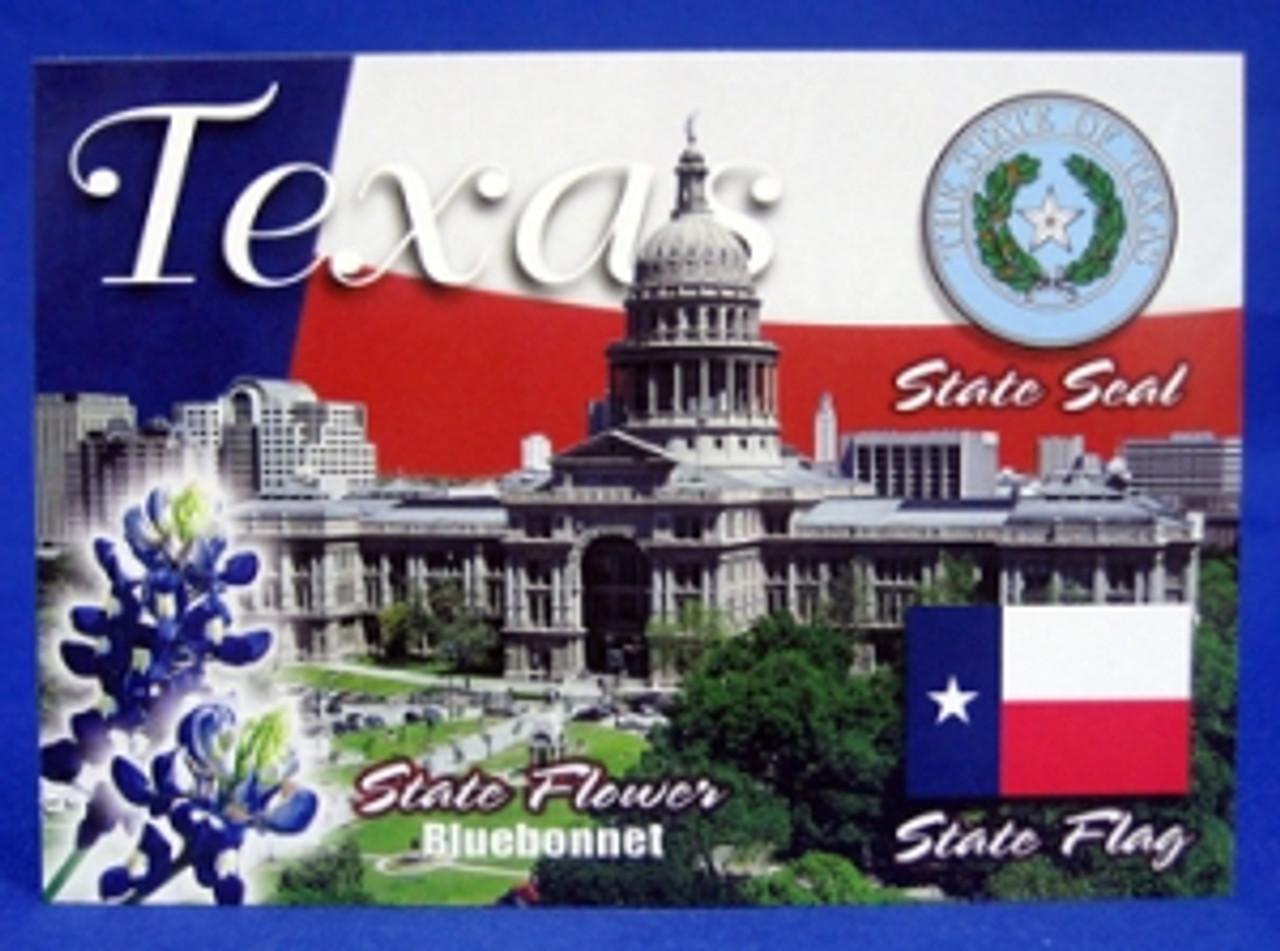 Texas Montage Postcard