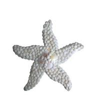 Starfish Wall Décor 13 ½