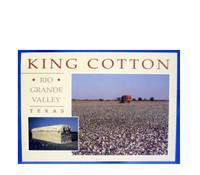 King Cotton Postcard