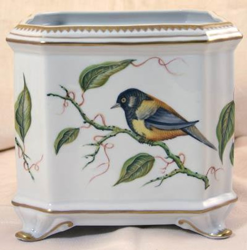 Giftware Sparrow Square Cachepot