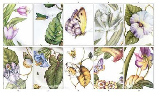 Greeting Cards Assorted Botanical Set of 10