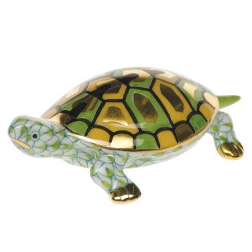 Baby Turtle Key Lime